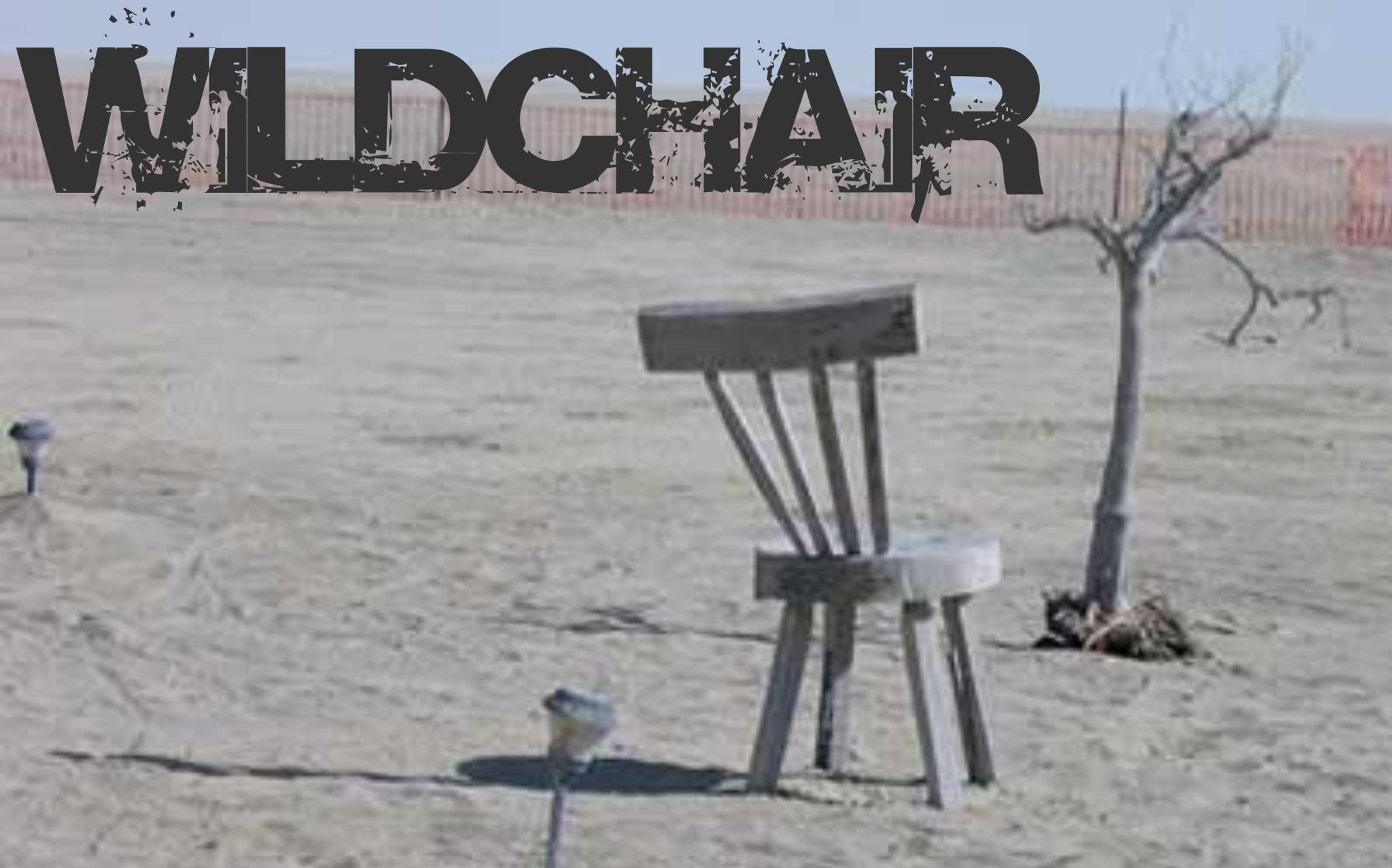 Wildchair.jpg